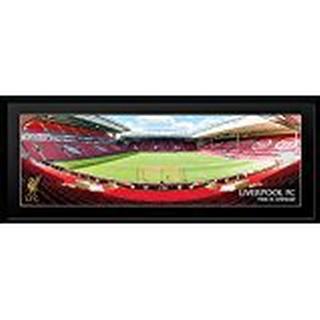 GB Eye Liverpool Anfield 30x75cm Framed art