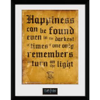 GB Eye Harry Potter Happiness Can be 30x40cm Framed art