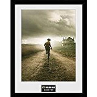 GB Eye The Walking Dead Season 2 30x40cm Framed art