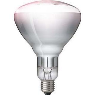 Philips BR125 IR Incandescent Lamp 250W E27
