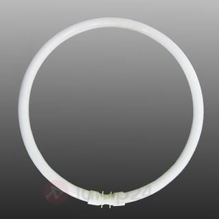 Sylvania 0000528 Fluorescent Lamp 55W 2GX13