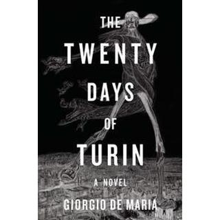 twenty days of turin a novel
