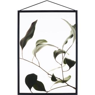 Paper Collective Floating Leaves 09 29.7x42cm Posters