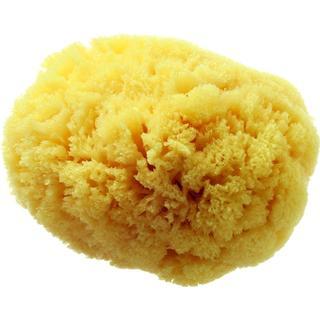 Hydrea London Grass Sea Sponge