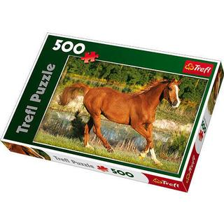 Trefl The Beauty of Gallop
