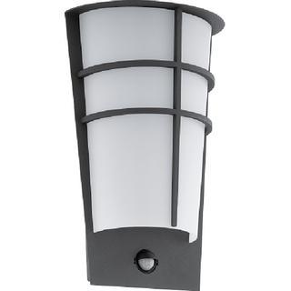 Eglo Breganzo 96018 Wall Flush Light