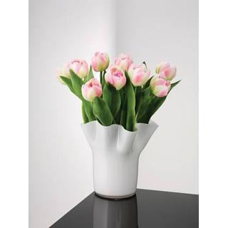Aida Tulip 20cm