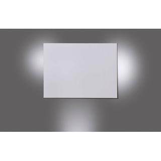 Celexon Expert Pure White (16:9 250x140cm Fixed Frame)