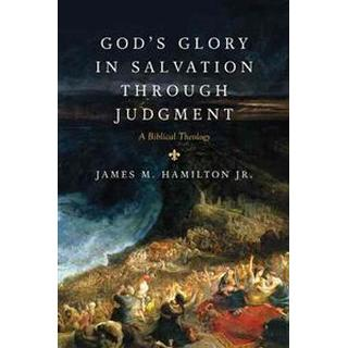 God's Glory in Salvation Through Judgment (Hardcover, 2010)