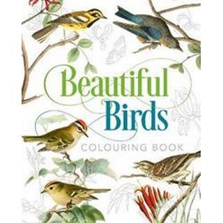 Beautiful Birds Colouring Book (Paperback, 2019)
