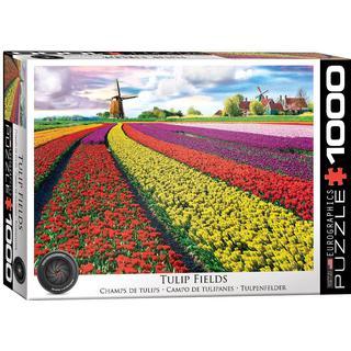 Eurographics Tulip Field Netherlands 1000 Pieces
