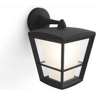 Philips Hue Econic Down Wall Light