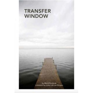 Transfer Window (Paperback, 2019)