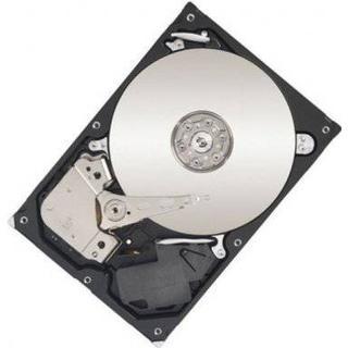 Lenovo ThinkServer 4XB0G88755 1TB