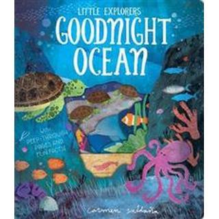 Goodnight Ocean (Other, 2019)