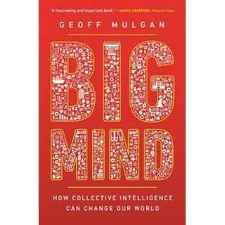 Big Mind (Paperback, 2019)