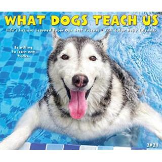 What Dogs Teach Us 2021 Box Calendar (Kalender, Calendar)