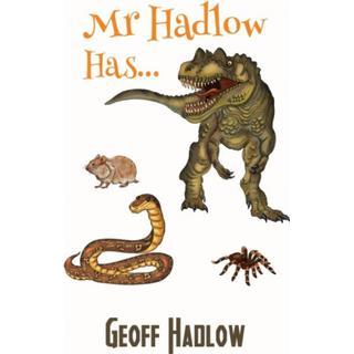 Mr Hadlow Has... (Bog, Paperback / softback)