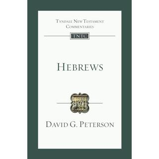 Hebrews: An Introduction and Commentary (Bog, Paperback / softback)