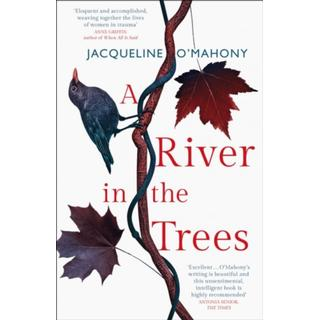 A River in the Trees (Bog, Paperback / softback)
