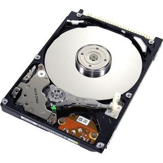 IBM 600GB / SAS / 10000rpm (49Y2003)