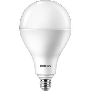 Philips A110 ND LED Lamps 30W E27
