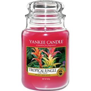 Yankee Candle Tropical Jungle 623g Scented Candles