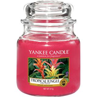 Yankee Candle Tropical Jungle Medium Scented Candles
