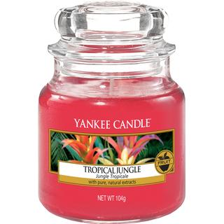 Yankee Candle Tropical Jungle Small Scented Candles