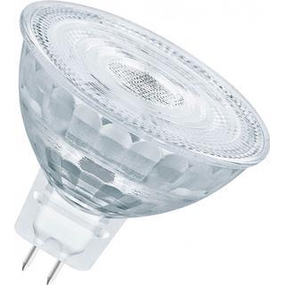 LEDVANCE P MR16 35 2700K LED Lamp 5.2W GU5.3 MR16