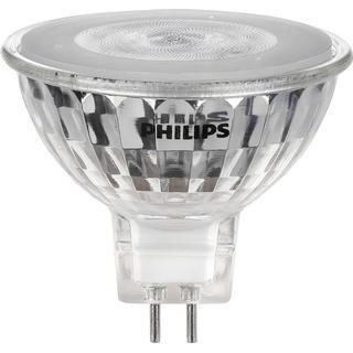 Star Trading Warmglow LED Lamp 5W GU5.3 MR16