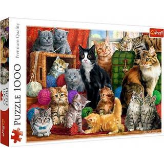 Trefl Cats Meeting