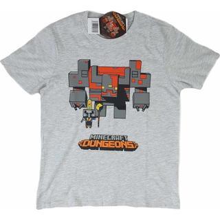 Minecraft T-shirt Dungeons - Grey