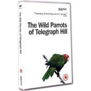 Wild Parrots Of Telegraph Hill The (DVD)