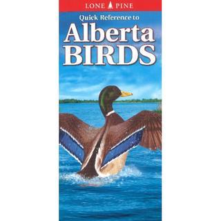 Alberta Birds (Pocket Nature Guides Series)