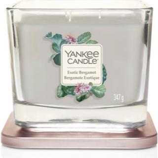 Yankee Candle Exotic Bergamot Medium Scented Candles