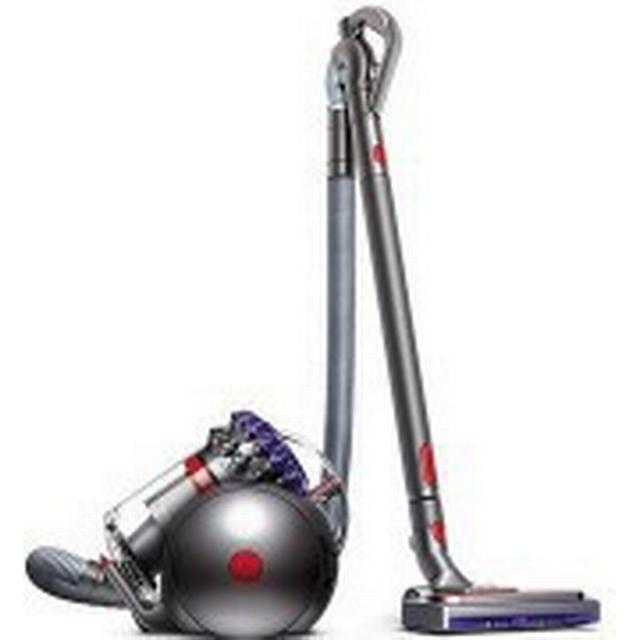 Dyson Big Ball Animal 2