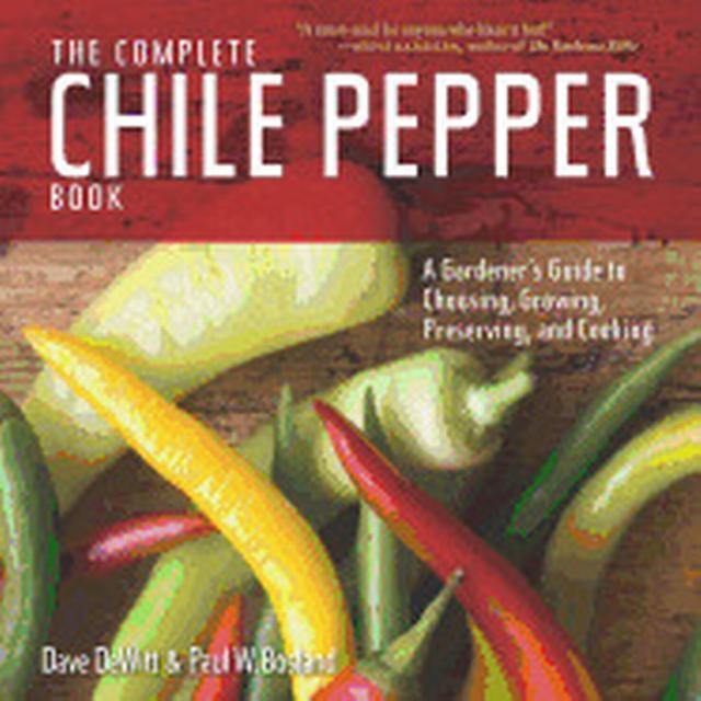Chili Mac (Ground Beef Recipe)